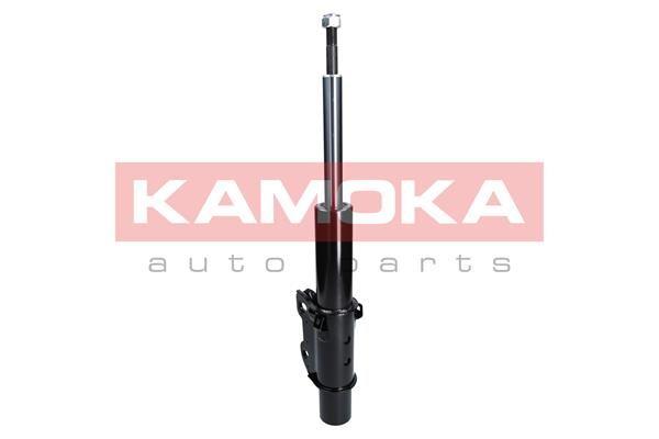 EGR ventil (AGR) KAMOKA 19010 19010