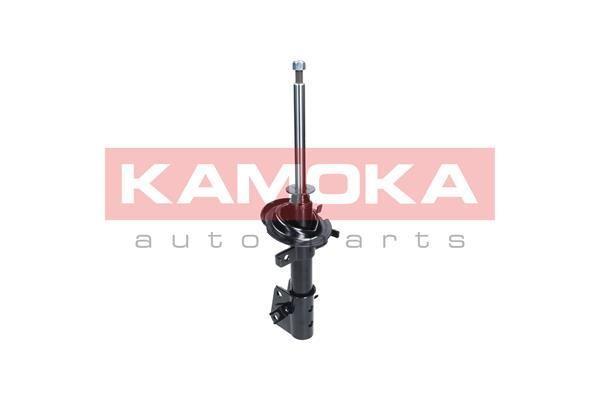 KAM-F113101 F113101